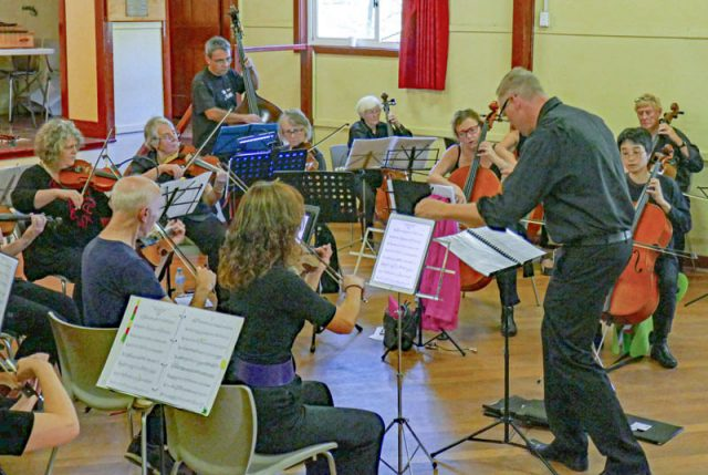 Paul Taylor who conducts innominato Strings at the St Albans Strings Workshop